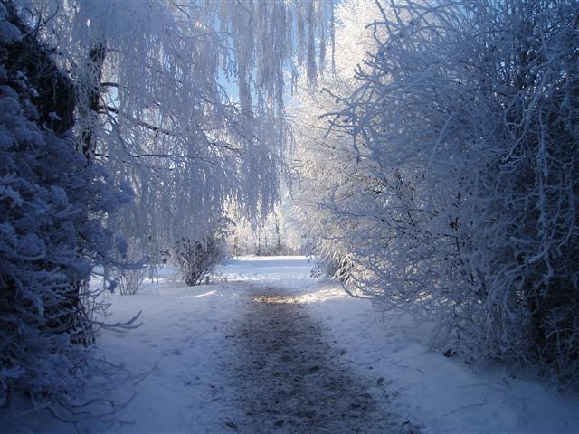 gravoline 2014 l europe va conna tre l hiver le plus froid depuis 100 ans. Black Bedroom Furniture Sets. Home Design Ideas